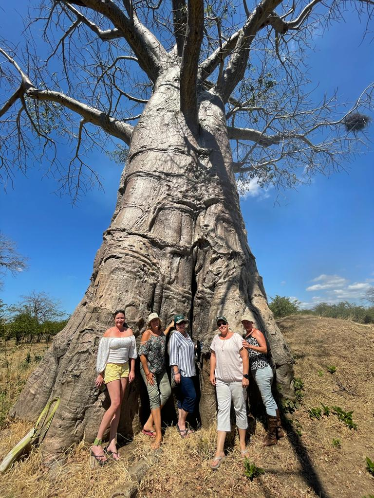 Baobab Girls_Nomad Africa